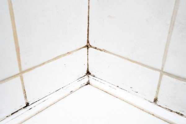 Как убрать плесень в швах плитки: причины появления и лучшие способы борьбы