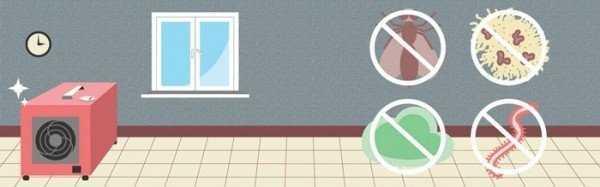 Обработка озоном помещений от плесени: обзор популярных озонаторов