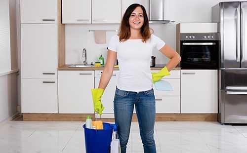 Средство отклопов «Чистый дом»: эффективность, плюсы иминусы