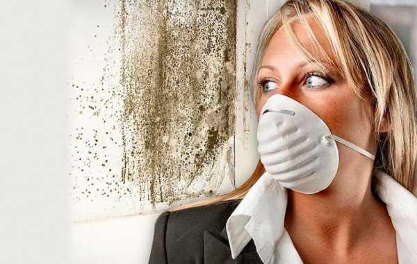 Чем опасна плесень в квартире для здоровья человека