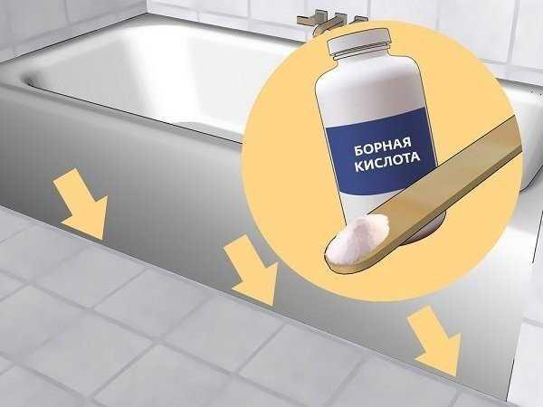 Белые жучки в ванной: что за зверь и как с ним бороться?