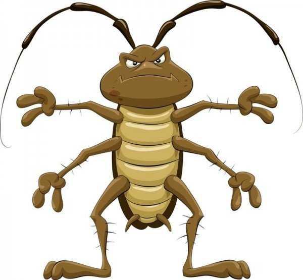 Избавляемся от домашних тараканов