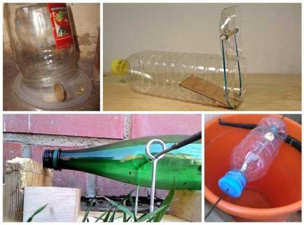 5 самодельных ловушек от мышей из бутылки и банки