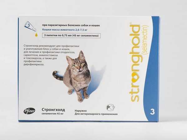 Подкожный клещ у кошек: разновидности, симптомы, профилактика и лечение