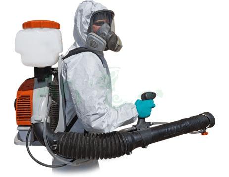 Обработка от клопов и тараканов методы уничтожения