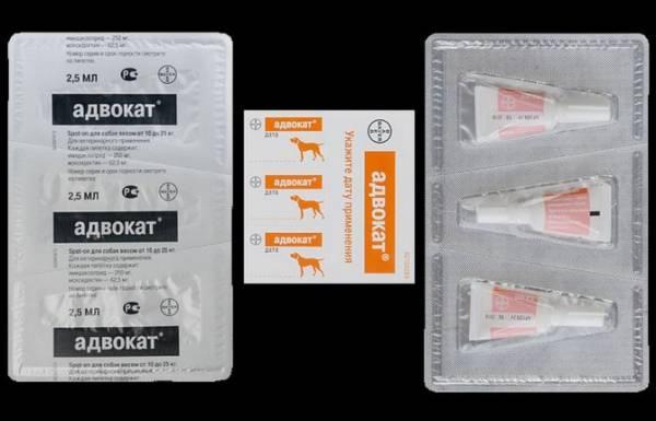 Ветеринарный препарат «Адвокат» для собак: дозировка, инструкция