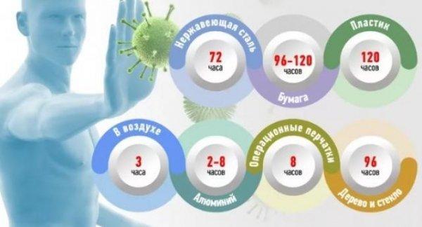 Сколько живет коронавирус на ткани