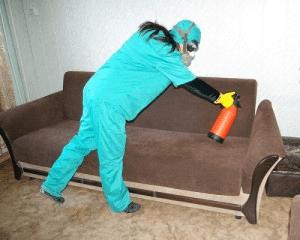 Боремся с клопами в доме и побеждаем их