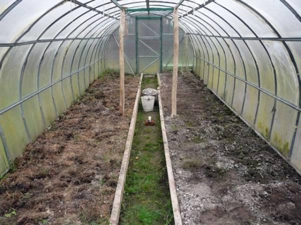 Советы, как обеззаразить почву в теплице, выбор средств для мытья парника, а также обзор удобрений для правильной подготовки почвы в теплице осенью